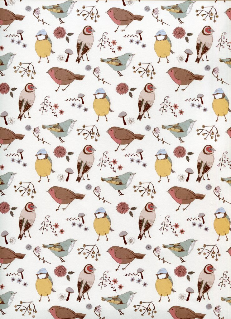 petits oiseaux.jpg