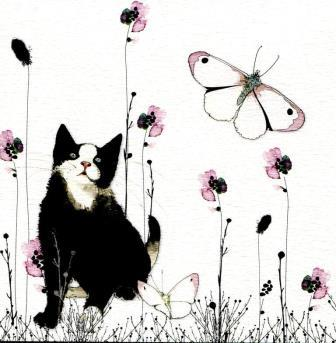 CHAT SO PAPILLON - Copie.jpg