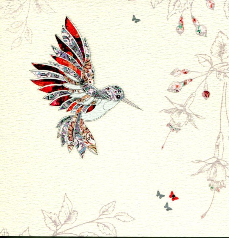 colibri.jpg