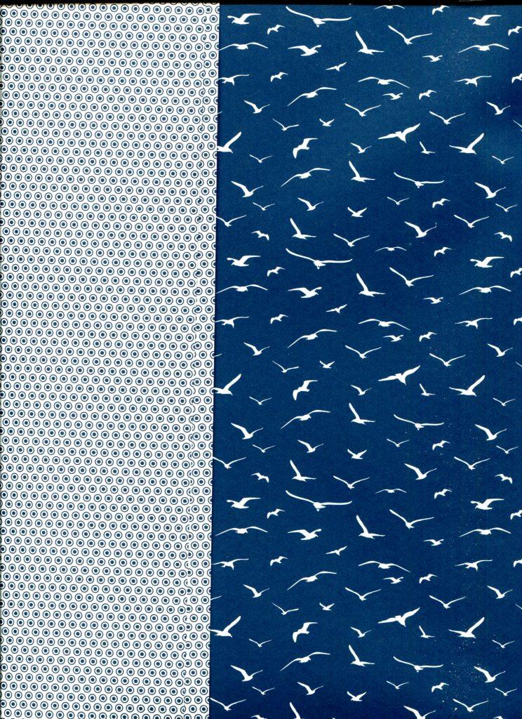 albatros recto verso bleu.jpg