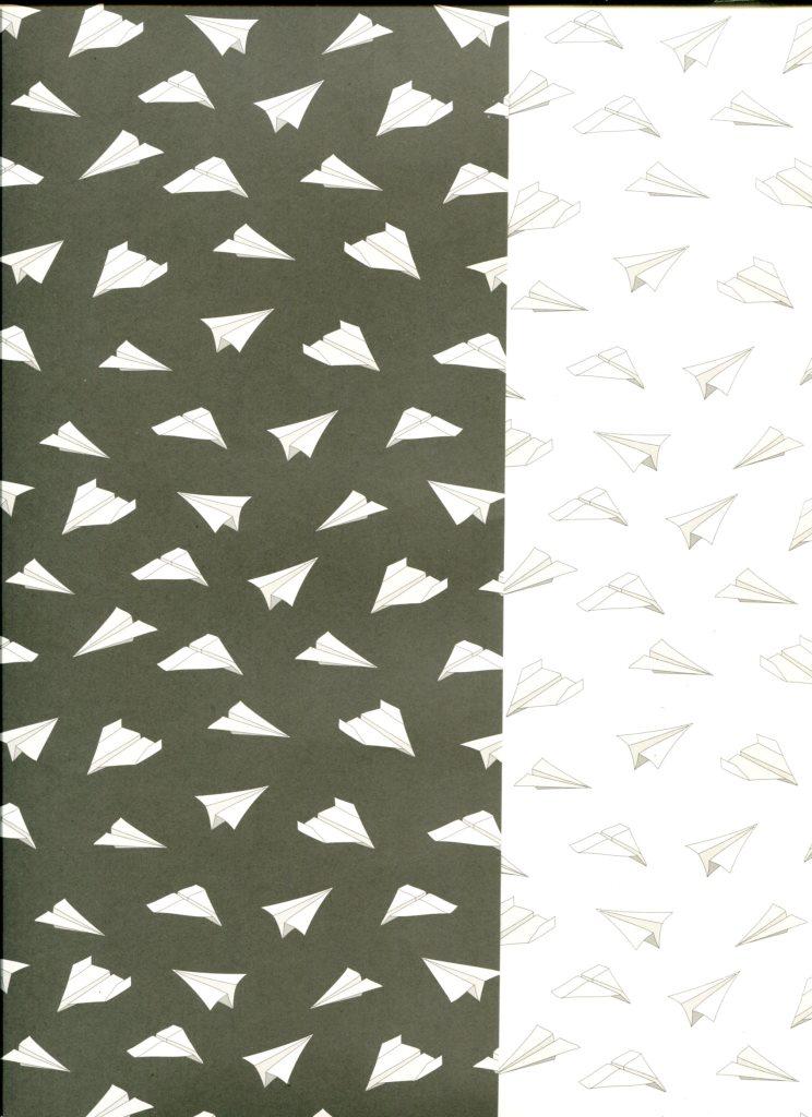origami recto verso noir et blanc.jpg