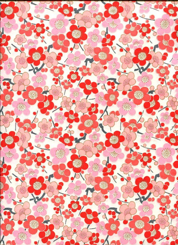 fleur de prunier rose rouge.jpg