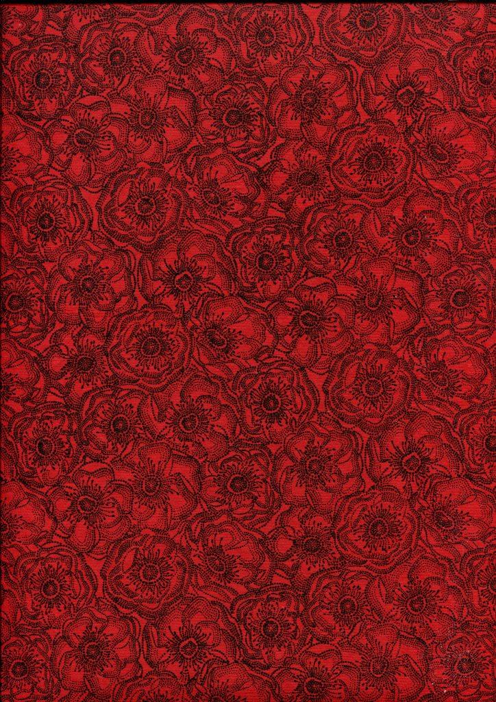 anémone rouge et noir.jpg