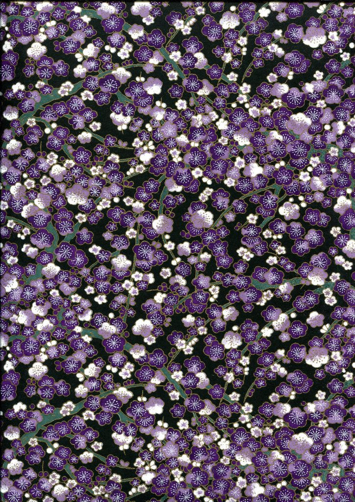branche de prunier violet.jpg