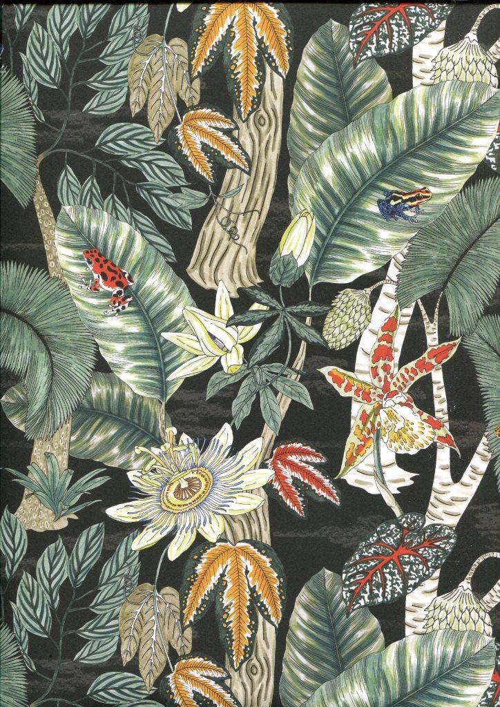 rainforest 3.8.jpg