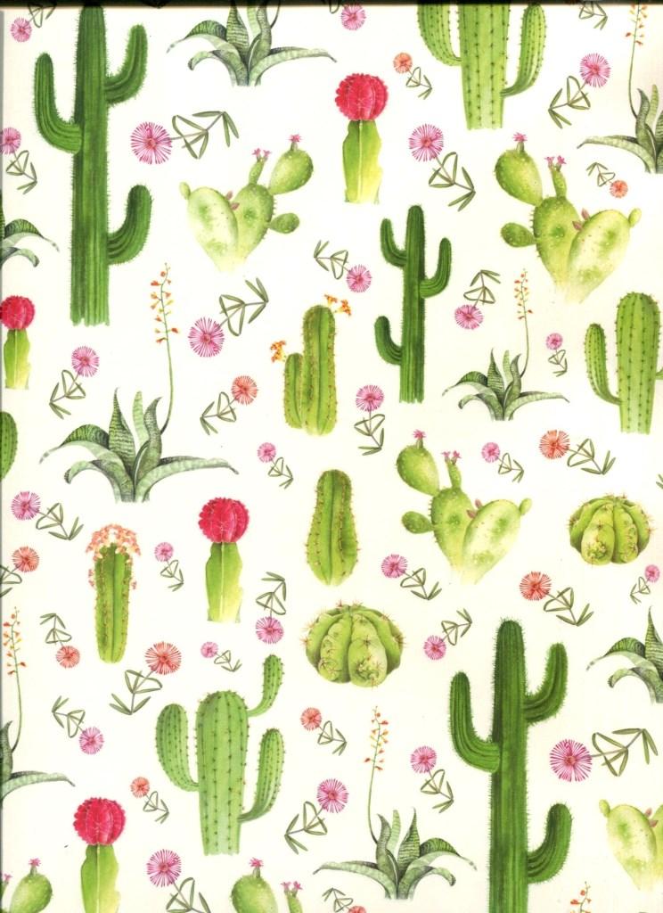 cactus fleuris.jpg