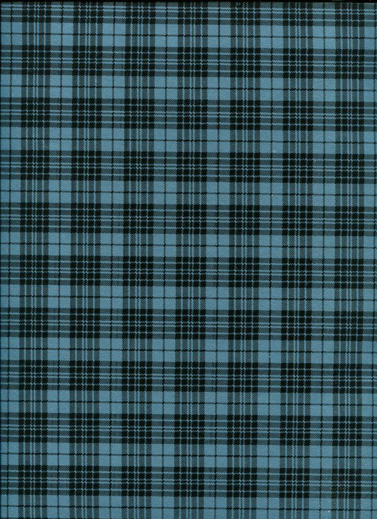 tartan bleu 5.20.jpg