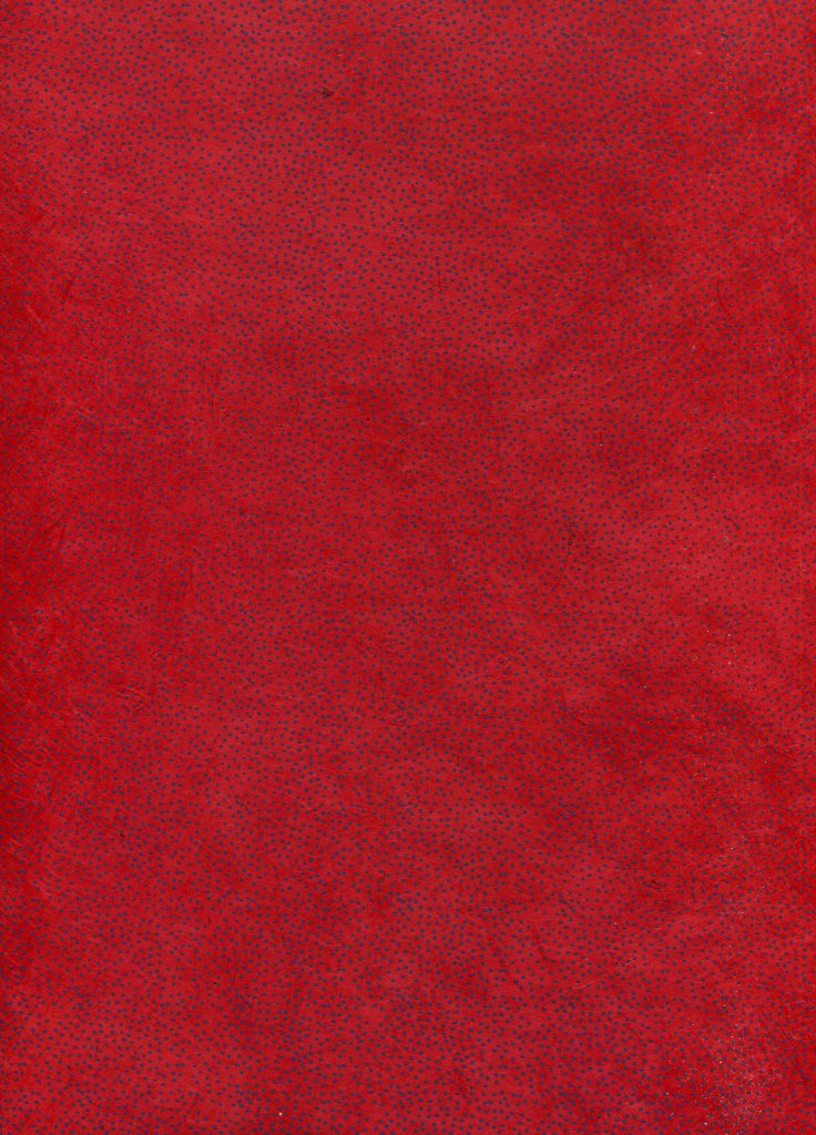 petit point ble u fond rouge.jpg