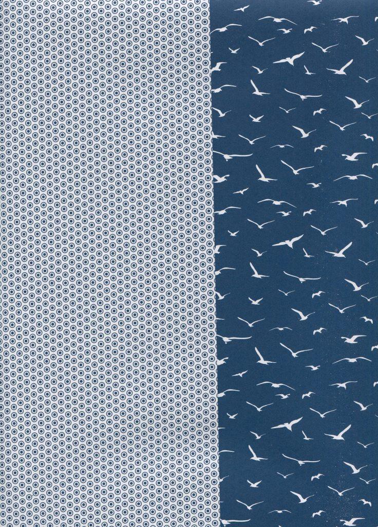 albatros bleu.jpg