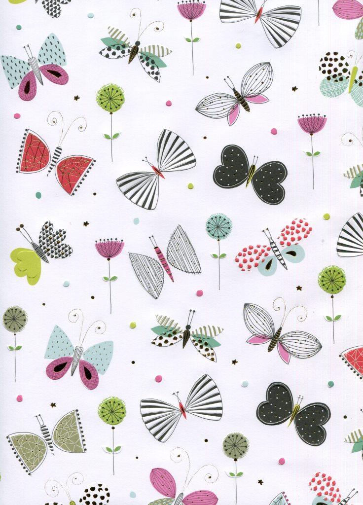 papillon graphique 4.80.jpg
