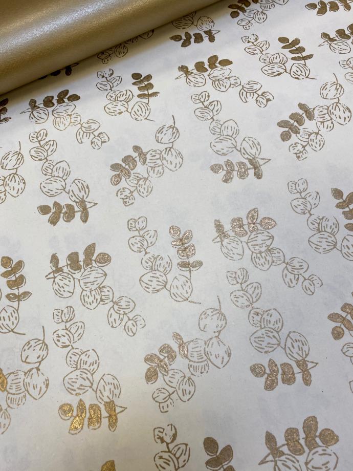 eucalyptus ivoire or00002