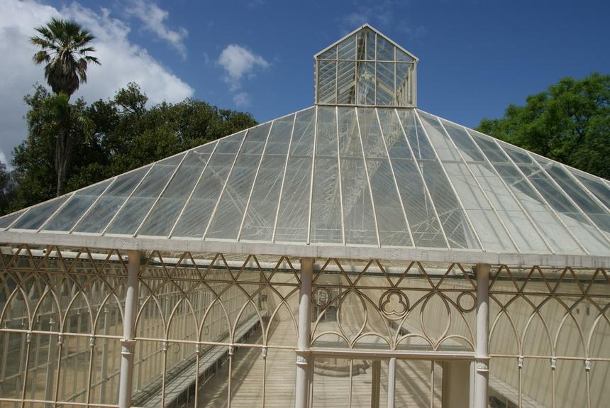 jardin botanique (5).JPG