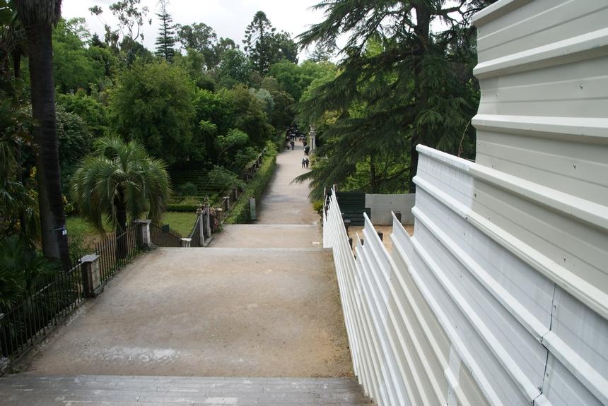 jardin botanique (2).JPG