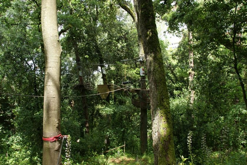 jardin botanique (31).JPG