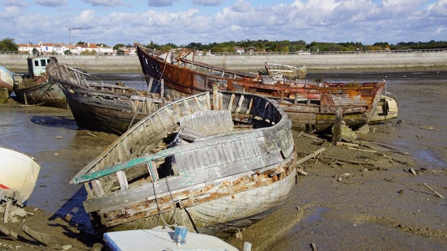 Noirmoutier 2016 (44).JPG