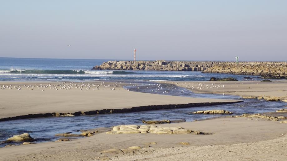 Vila Praia de Ancora (26).JPG