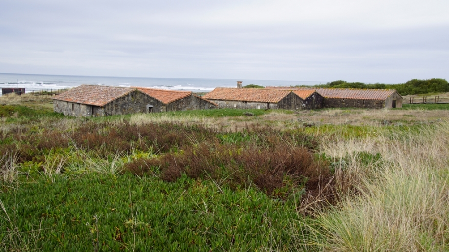 praia de paço (2).JPG