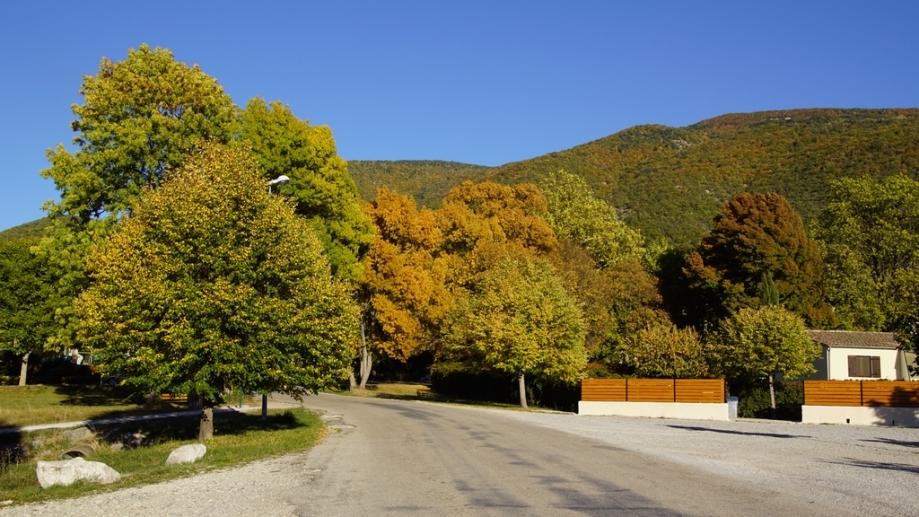 automne (1).JPG