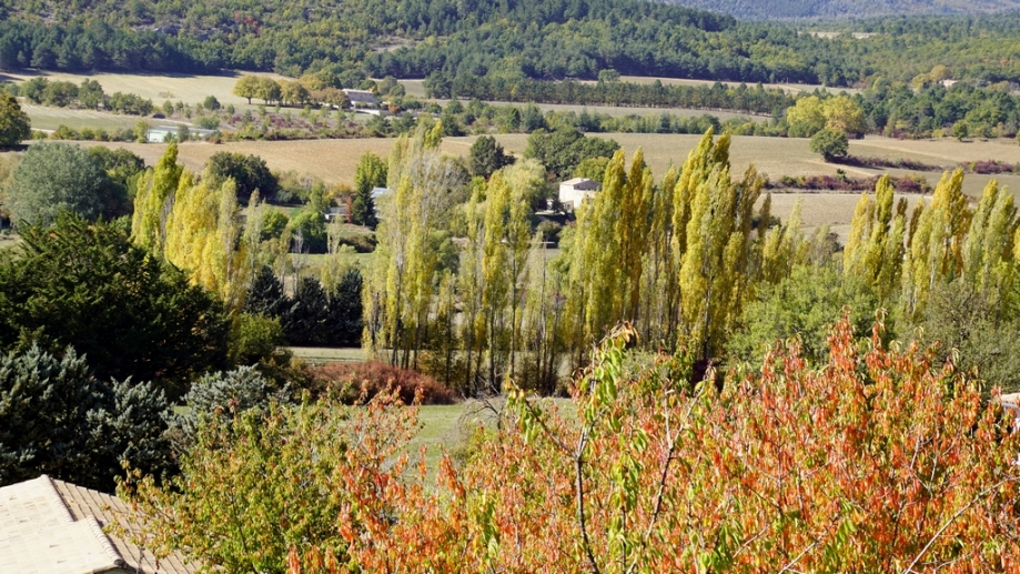 automne (12).JPG