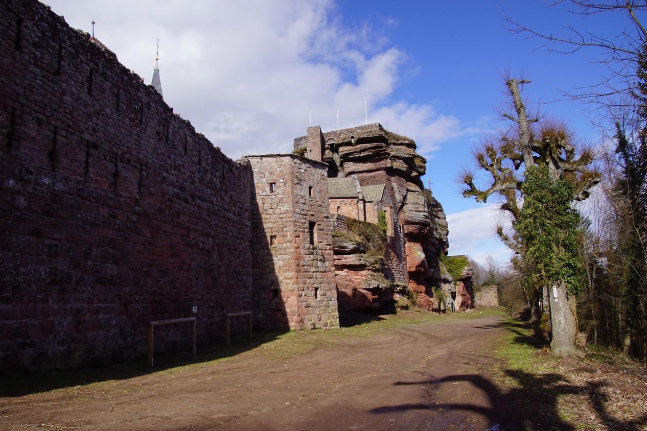 chateau du Haut Barr (9).JPG