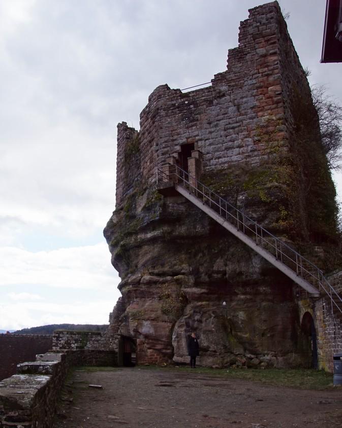 chateau du Haut Barr (22).JPG