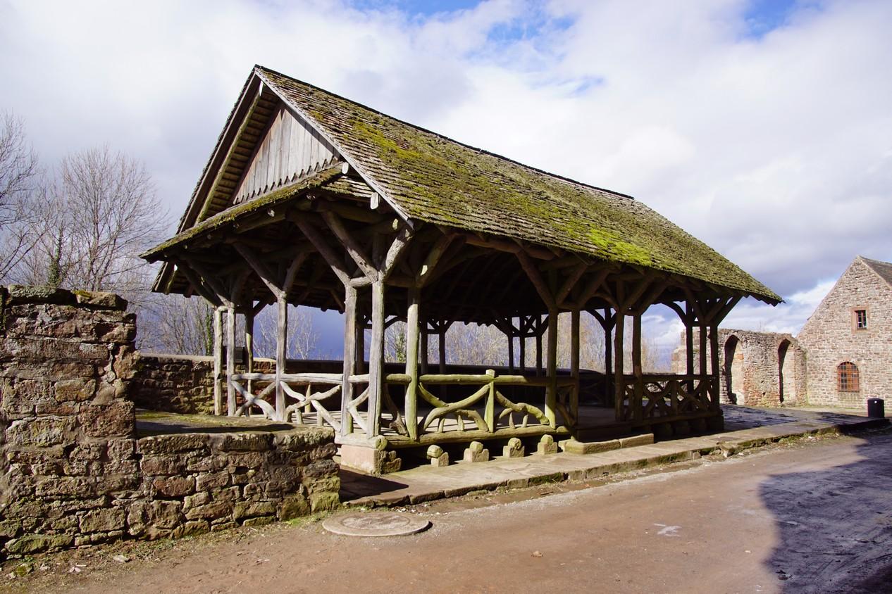 chateau du Haut Barr (14).JPG