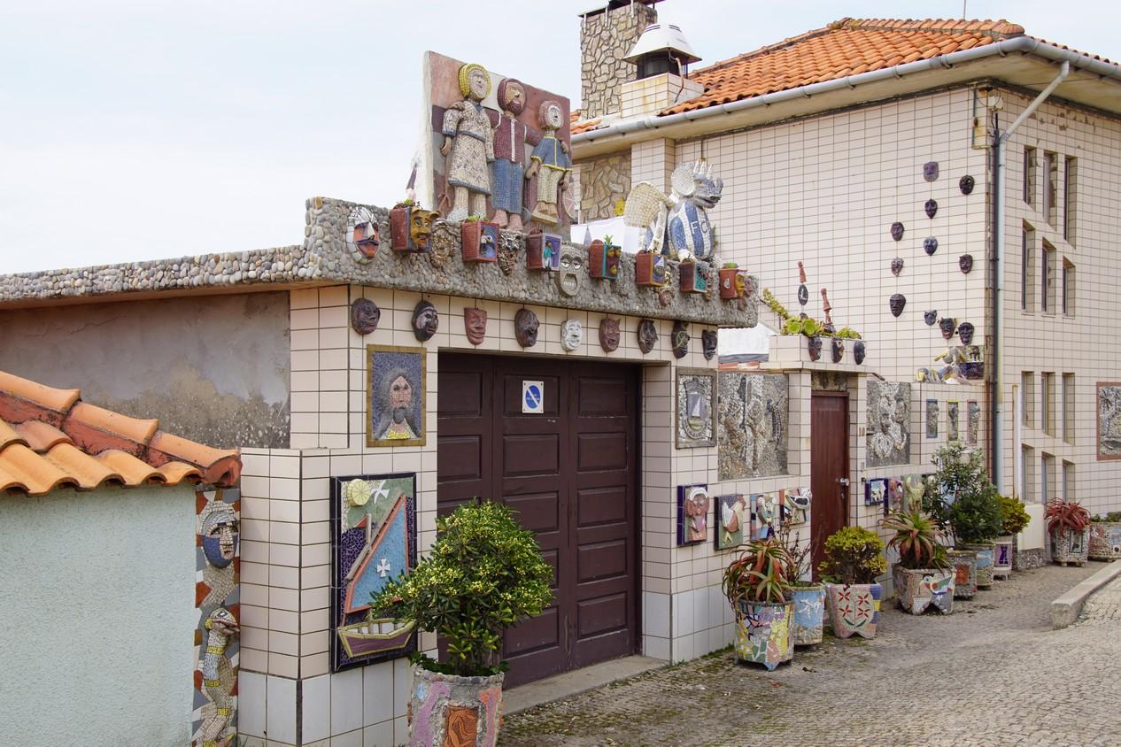 Vila chà (6).JPG
