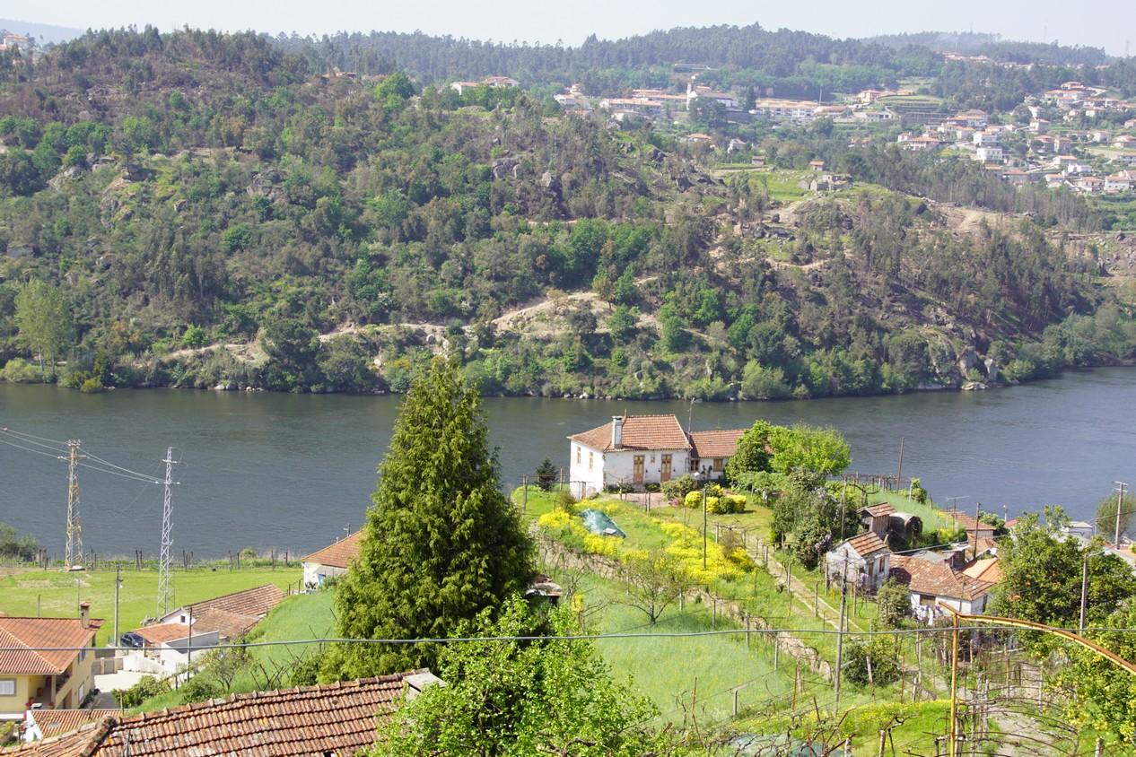 Douro (16).JPG