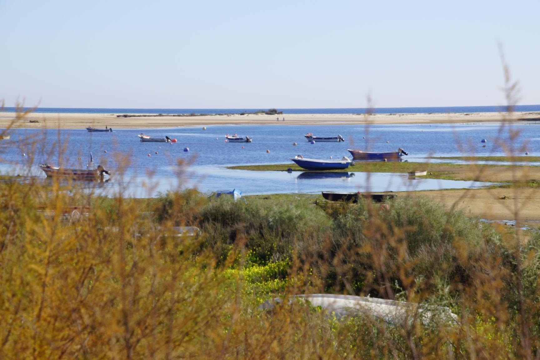 Les petites barques des pêcheurs... Paisibles