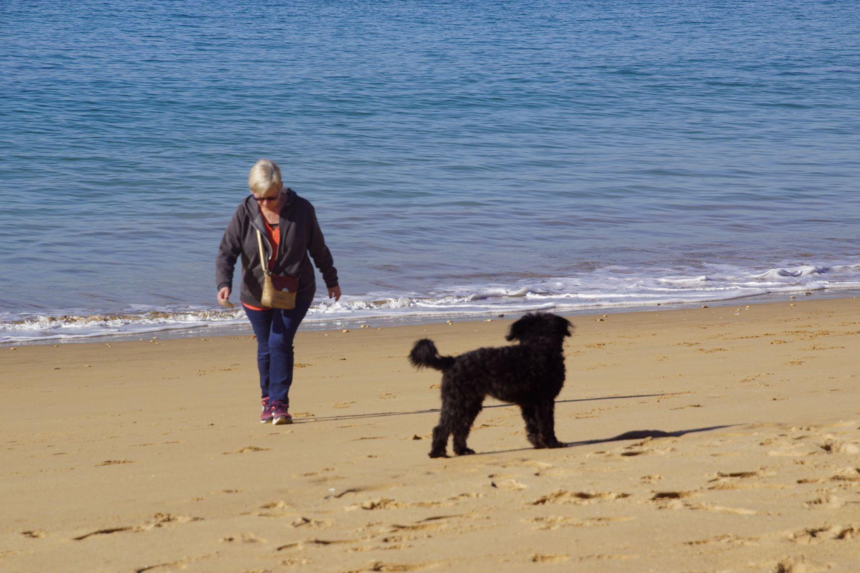 Balade sur la plage avec Pépite
