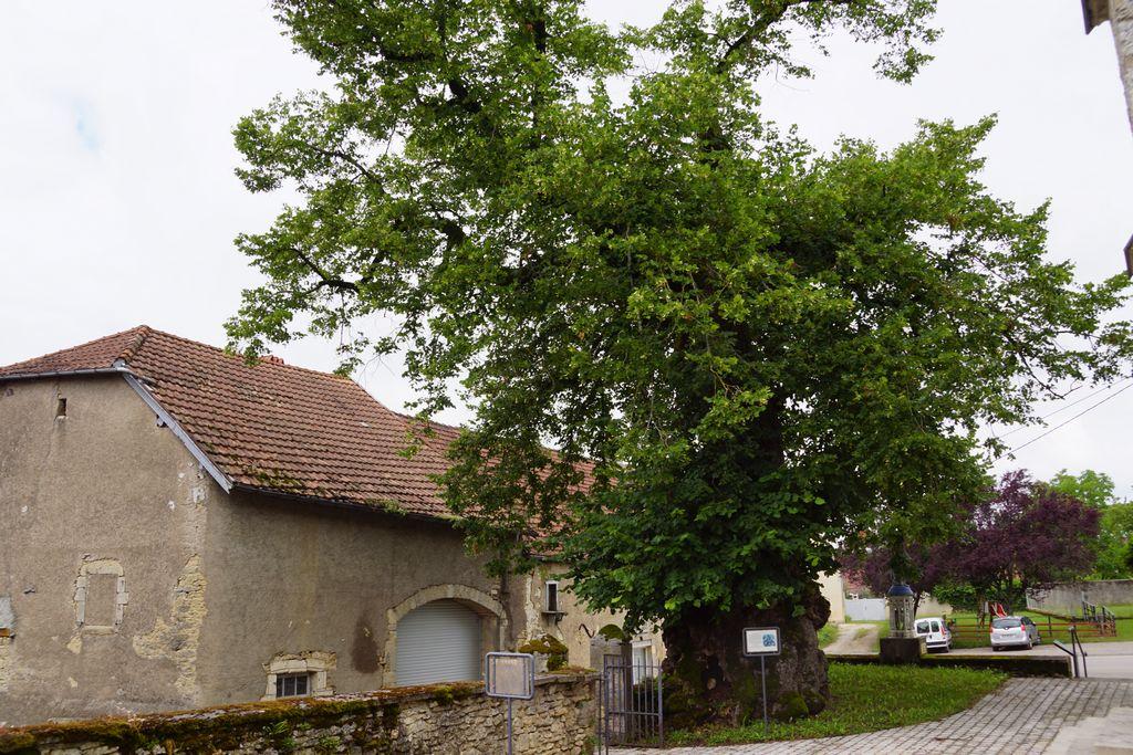 Fresne saint mamès (4)