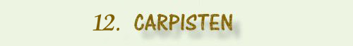12. Carpisten.jpg