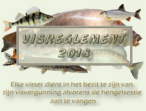 VISREGLEMENT  2018 (2) copie.jpg