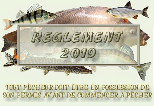 règlement titre  2019 b.jpg