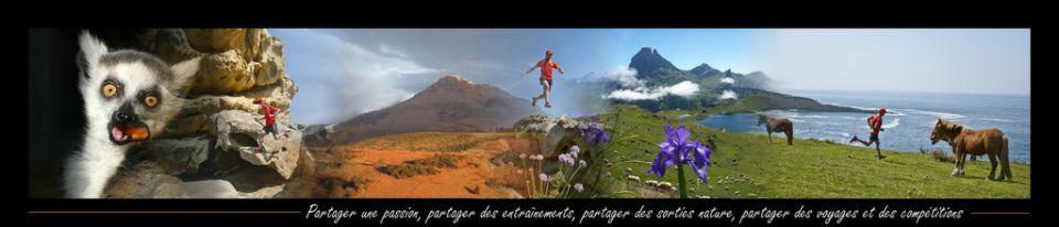 Le Blog du Lémurien