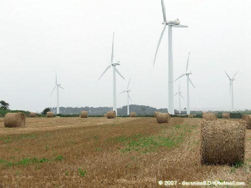 Le parc éolien à Goulien