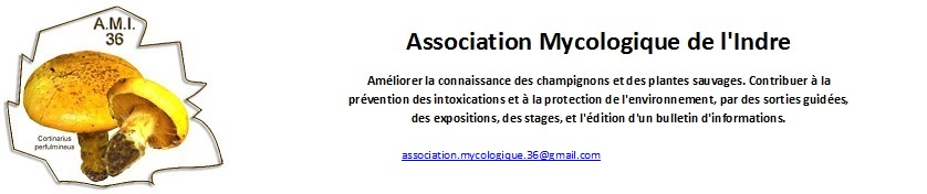 Association Mycologique de l'Indre