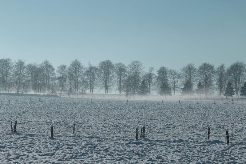 Recogne sous la neige