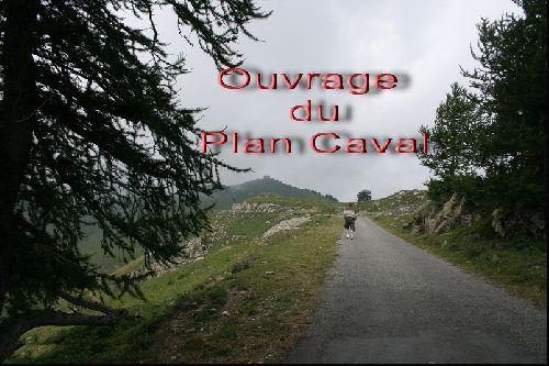 Plan Caval