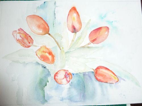 les tulipes oranges