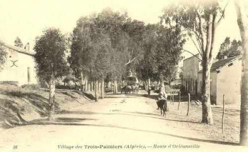 trois- palmiers - beaufils