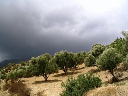 Région de Bni derkoul - septembre