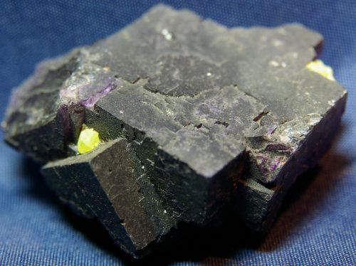 ME 09 - Soufre sur Fluorite, Muzquiz, Coahuila, Mexique  70 mm x 55 mm