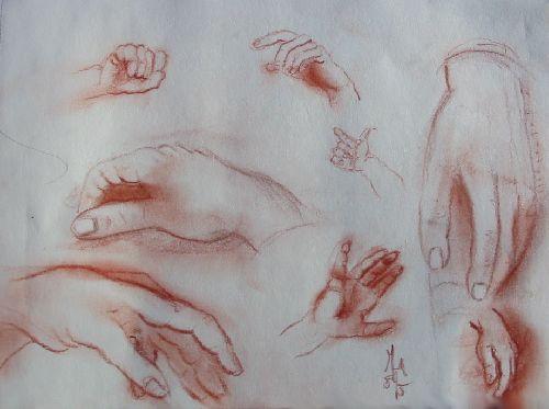 Etude de mains - Sanguine sur papier  Janvier 2008