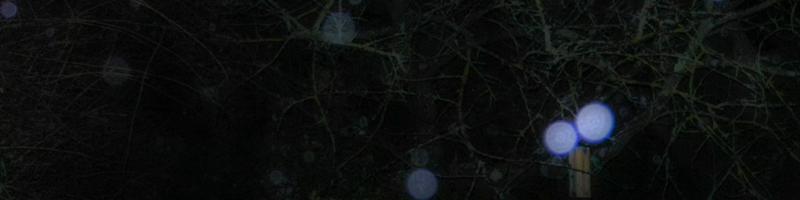 Le mystère des orbes