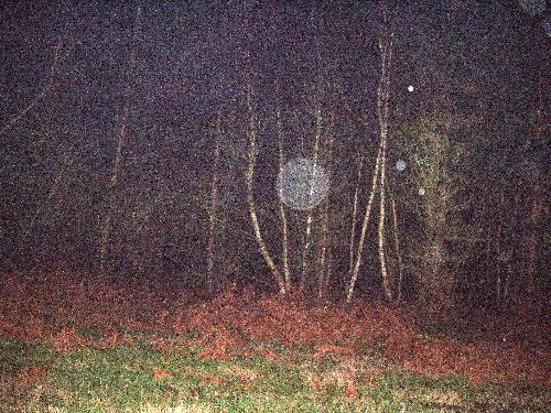 11 Décembre 2004 pris à l\'argentique avec flash