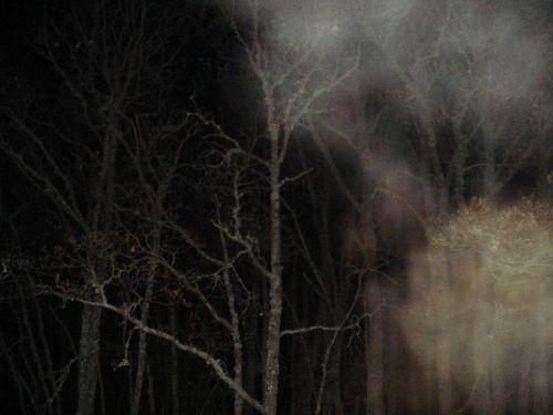Phénomène brumeux  étrange - Col de Vence