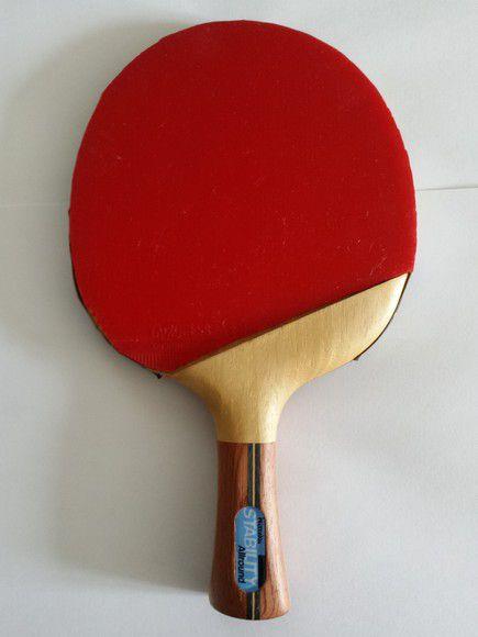 Raquette avec bois Nittaku Stability