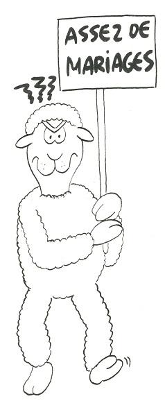 09-15-Mouton.jpg