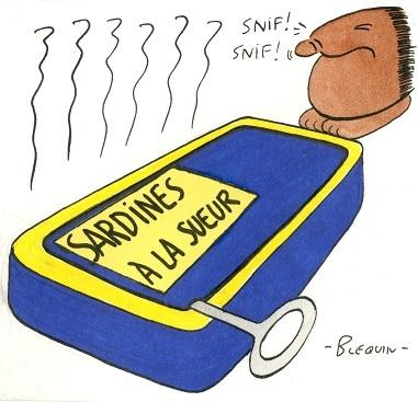 11-21-Grève des sardinières de Douarnenez (2).jpg